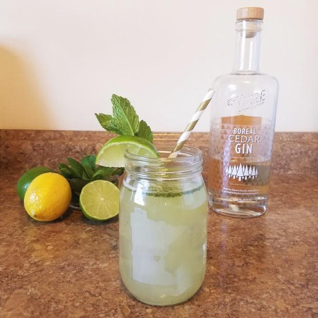 TaylorCathleen_Boreal Bootleg_Gin_Cocktail